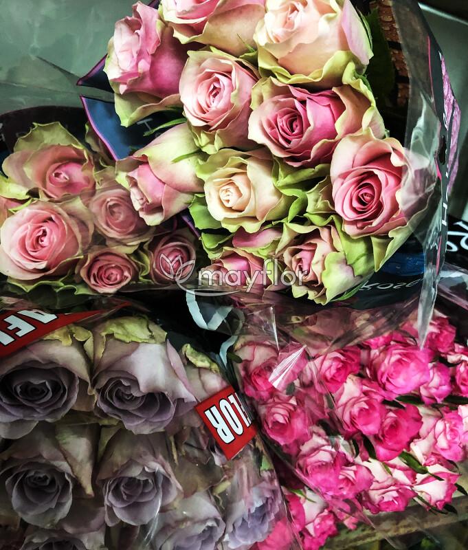 Конфет, купить розы оптом в херсоне