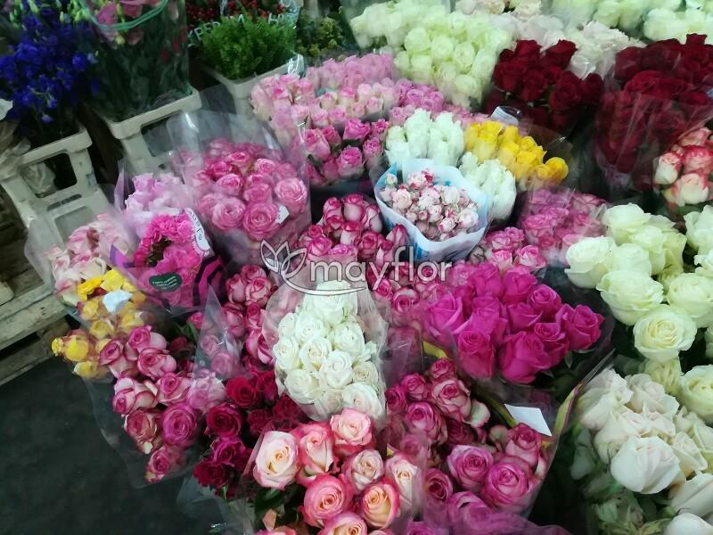 Цветов осень, купить розы оптом красноярск